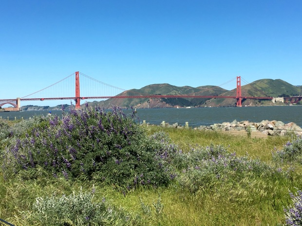 san_francisco_golden_gate_bridge_bike_tour_1