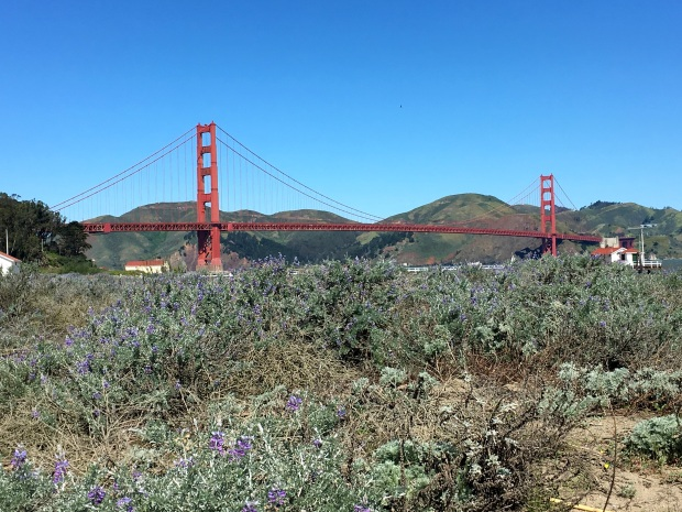 san_francisco_golden_gate_bridge_bike_tour_3