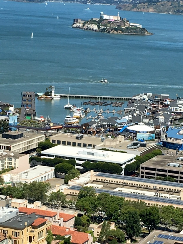 san_francisco_coit_tower_view_5