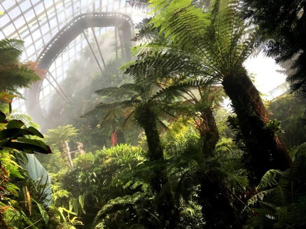 singapur-reisetagebuch-gardens-by-the-bay-cloud-forest-makeupinflight-4