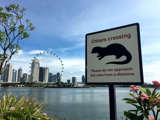 singapur-reisetagebuch-otters-crossing-makeupinflight