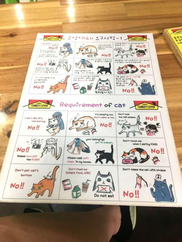 reisetagebuch-seoul-makeupinflight-cat-attic-cafe-2