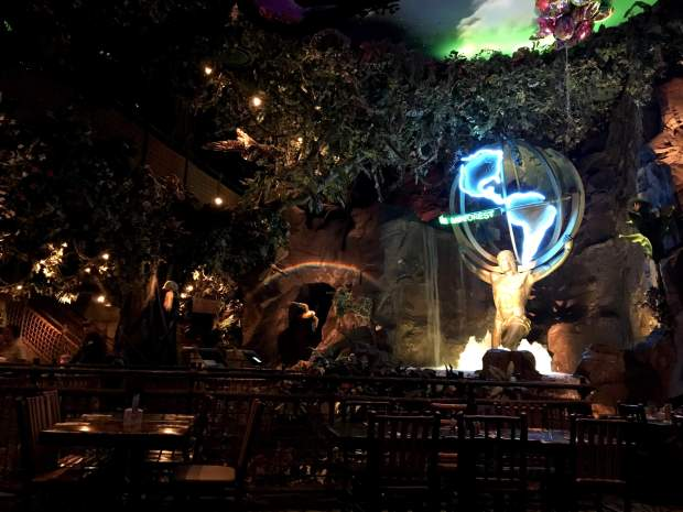 reisetagebuch-makeupinflight-san-francisco-rainforest-cafe-1