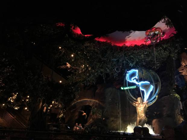 reisetagebuch-makeupinflight-san-francisco-rainforest-cafe-4