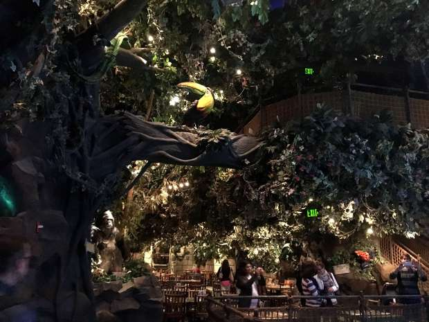 reisetagebuch-makeupinflight-san-francisco-rainforest-cafe-6